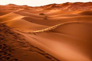 Vakantie Marokko - Sahara